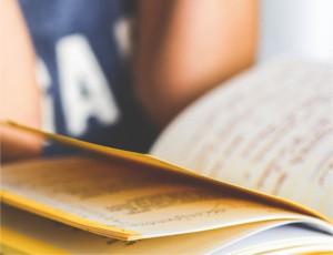 schreibberatung für studierende und autoren